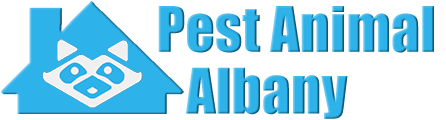 Albany Wildlife and Animal Removal